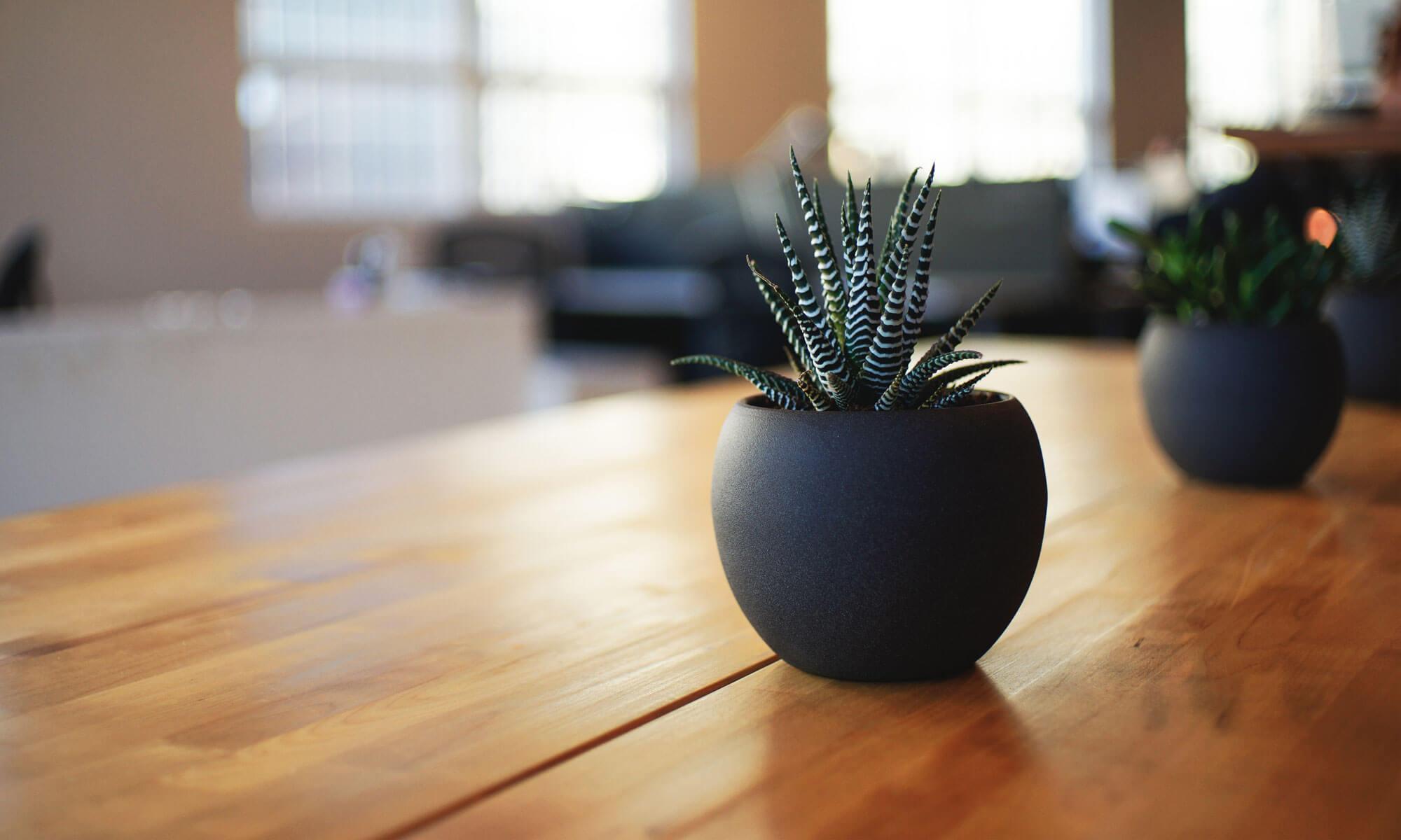 Blog Kenz Designs online Furniture Store